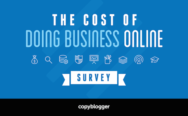 The Cost of Doing Business Online Survey