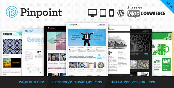 Pinpoint responsive wordpress theme